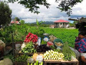 Produce stand in Tagaytay. Philippines, September 2014
